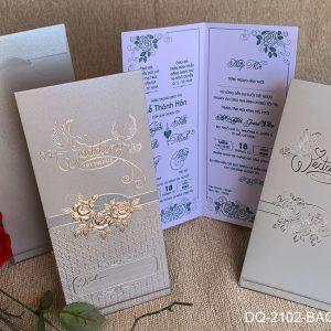 DQ2102BACNHU